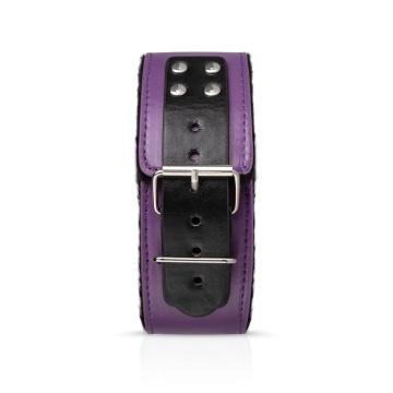 Фиолетовый эротический набор Dark Apprentice